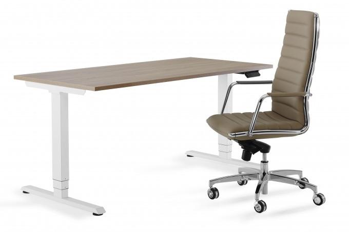 Flex 3 electrisch zit/sta bureau